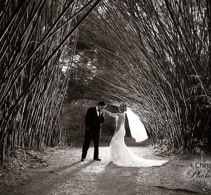 Katie & Grayson at Magnolia Plantation