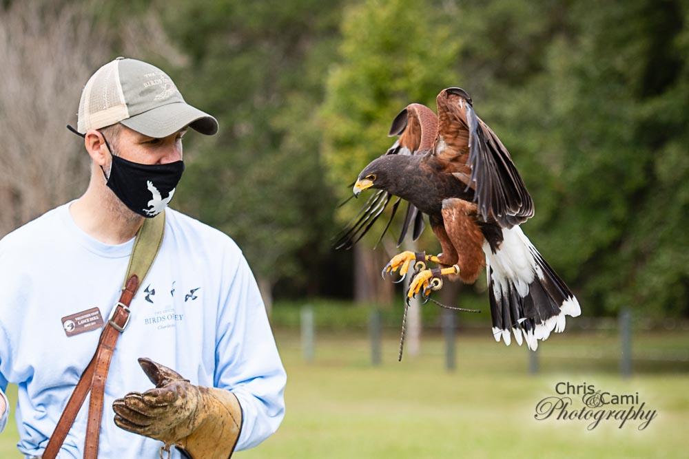 201101-Charleston-Wildlife-Photographer-Center-for-Birds-of-Prey-0033.jpg